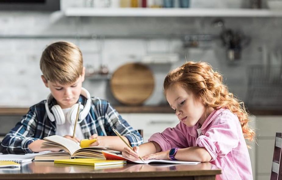 Edukacja domowa ma w sobie wielki potencjał